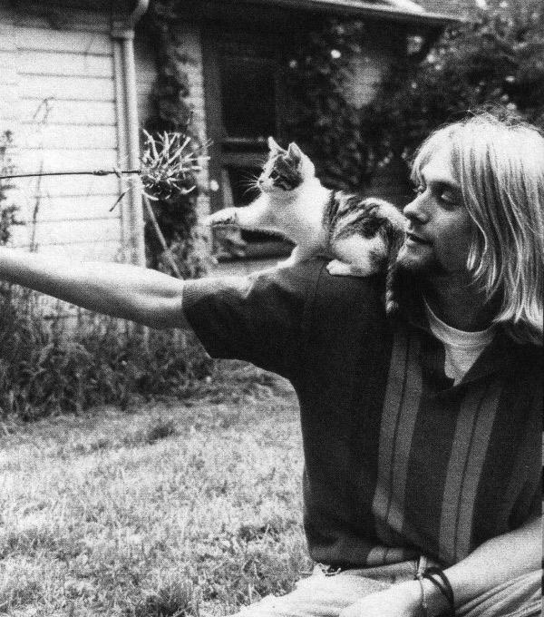 курт кобейн с котенком фото